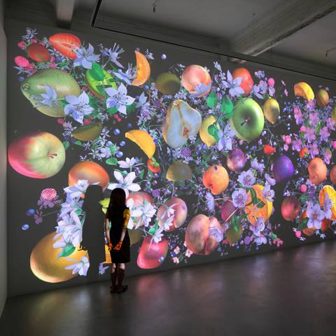 /Jennifer Steinkamp, Still-Life Installation view, Lehmann Maupin, Hong Kong, September 19 – October 26, 2019. Image courtesy Lehmann Maupin, Hong Kong. (via cobosocial.com)