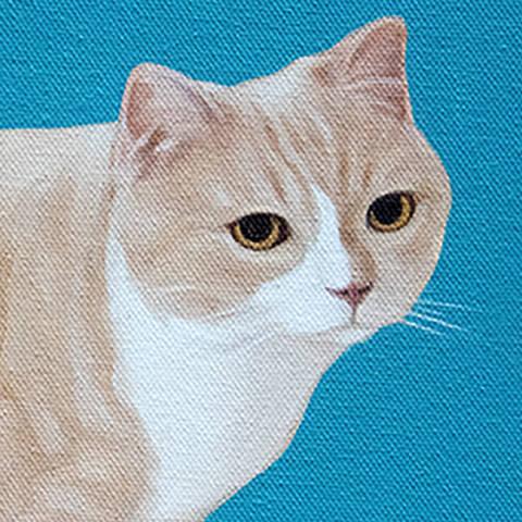 /Cat Illustration by Ethan Kim