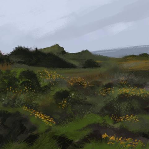 /Landscape illustration by Ellie Hall