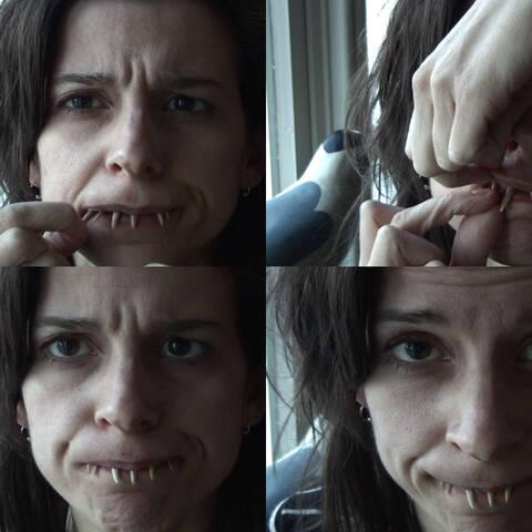 Nina Katchadourian, Mystic Shark