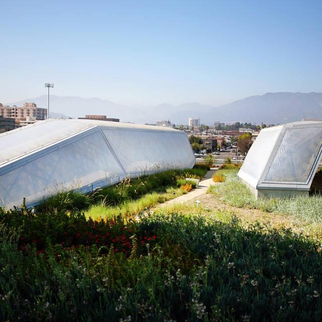 Rooftop garden at 950 building